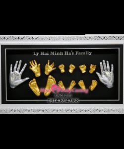 Album mẫu gia đình